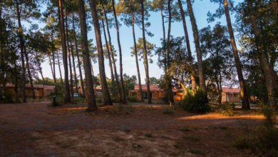 Le Green Resort au milieu des pins